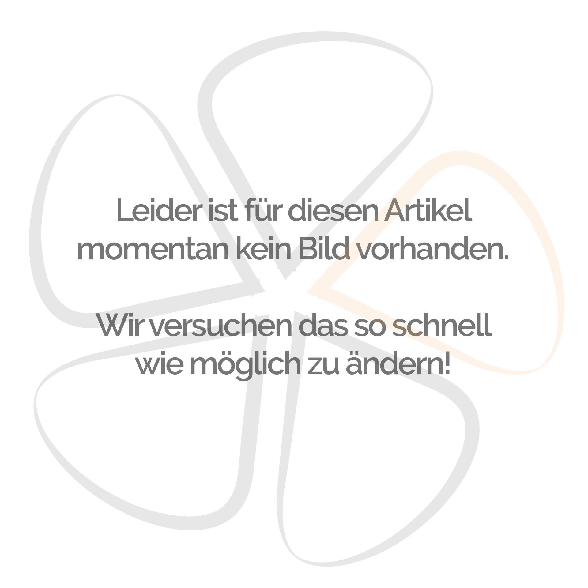 eMace Bremshebel mit Armatur links